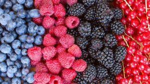 http-%2F%2Fcoresites-cdn.factorymedia.com%2Ftwc%2Fwp-content%2Fuploads%2F2014%2F12%2Fbigstock-rows-of-fresh-berries-on-tabl-59947463