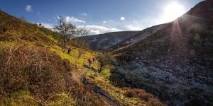 http---cdn.coresites.factorymedia.com-twc-wp-content-uploads-2015-06-uk-trails-best-natural-mountain-biking-trails-3-680x340